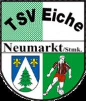 ATSV Stadl-Paura - SV Flexopack Sierning 0:2